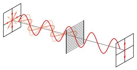 Wire-grid-polarizer